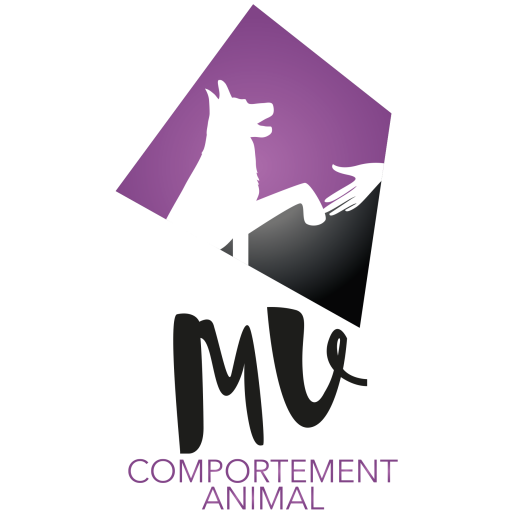 MV Comportement Animal
