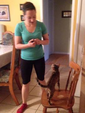 entrainement-clicker-chat-bengal-lily_2